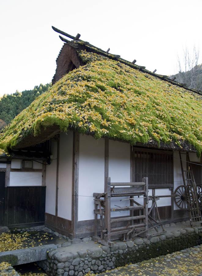 Historický dom